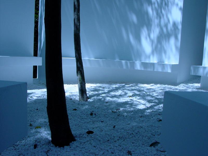forest_observatory_4.jpg