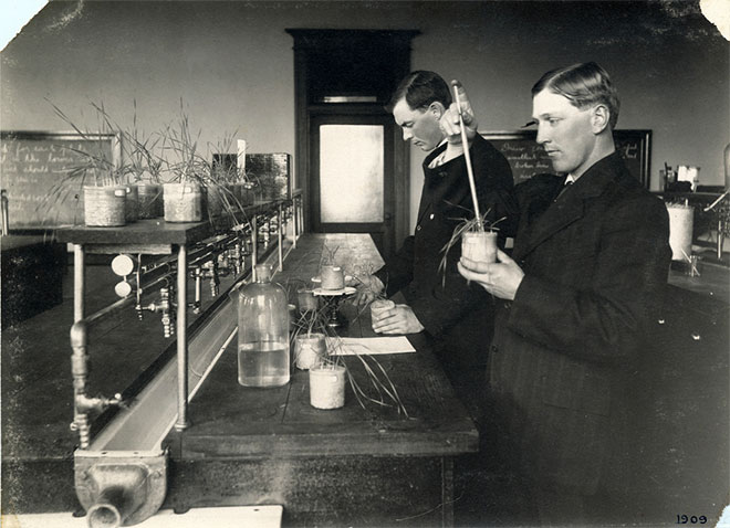 Agronomy students are testing soil fertility and plant growth under various soil conditions in the lab. Harriet's Collection, 1900-1909.